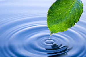 Positive affirmations - the ripple effect